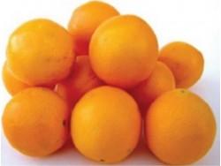 Orange Bio Naveline